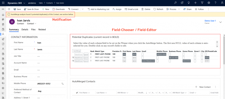 Potential Duplicates with Editable Field Chooser Form screenshot
